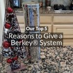 Top 5 Reasons to Give a Berkey System